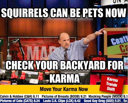 Squirrels can be pets now Check your backyard for karma  Mad Karma with Jim Cramer