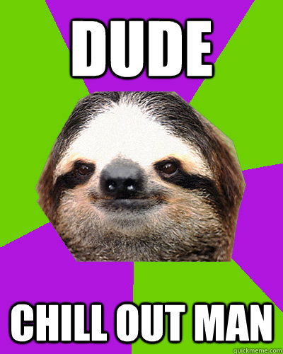 dude chill out man - dude chill out man  Weed sloth