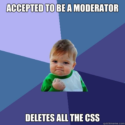 accepted to be a moderator deletes all the css - accepted to be a moderator deletes all the css  Success Kid
