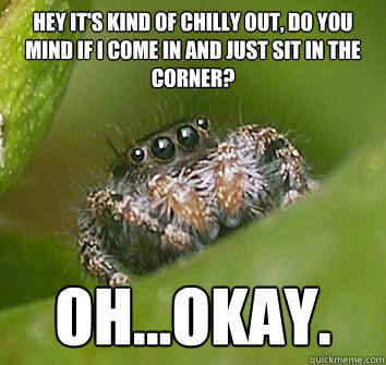 Hey it's kind of chilly out, do you mind if I come in and just sit in the corner? Oh...Okay.  Misunderstood Spider