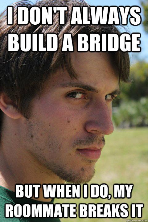 i don't always build a bridge but when I do, my roommate breaks it