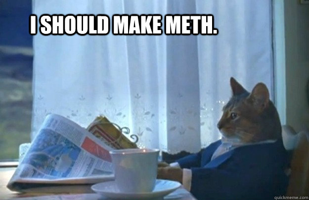 I should make meth. - I should make meth.  Sophisticated Cat