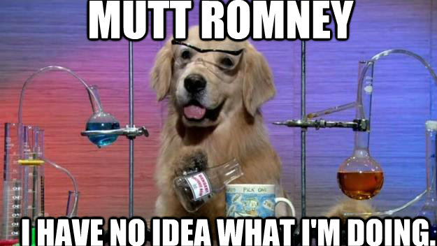 Mutt Romney I have no idea What i'm doing.