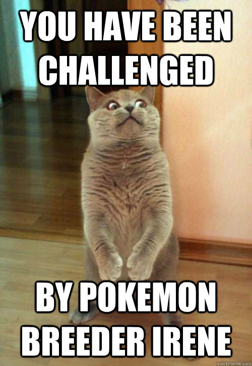 You have been challenged by pokemon breeder irene - You have been challenged by pokemon breeder irene  Horrorcat