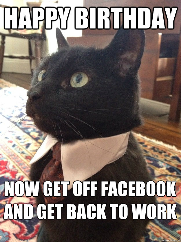 Happy birthday now get off facebook and get back to work  - Happy birthday now get off facebook and get back to work   Business Cat