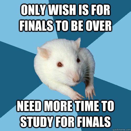 only wish is for finals to be over need more time to study for finals  Stress