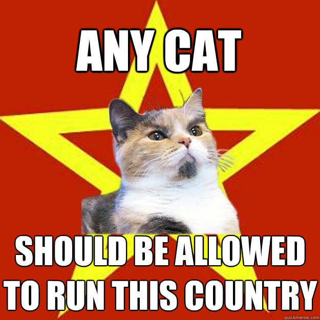 ANY CAT SHOULD BE ALLOWED TO RUN THIS COUNTRY - ANY CAT SHOULD BE ALLOWED TO RUN THIS COUNTRY  Lenin Cat