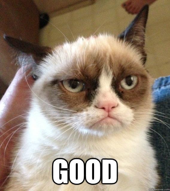 good -  good  Grumpy cat christmas music