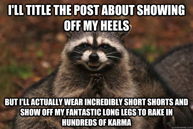 I'll title the post about showing off my heels But i'll actually wear incredibly short shorts and show off my fantastic long legs to rake in hundreds of karma - I'll title the post about showing off my heels But i'll actually wear incredibly short shorts and show off my fantastic long legs to rake in hundreds of karma  Evil Plotting Raccoon