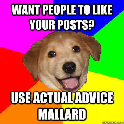 want people to like your posts? use Actual Advice Mallard - want people to like your posts? use Actual Advice Mallard  Advice Dog