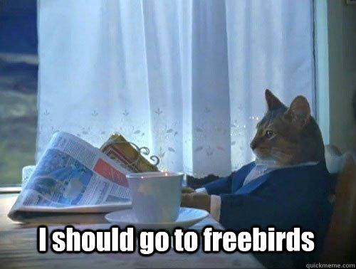 I should go to freebirds - I should go to freebirds  Fancy Cat