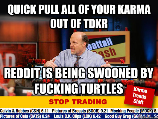 quick pull all of your karma out of tdkr reddit is being swooned by fucking turtles