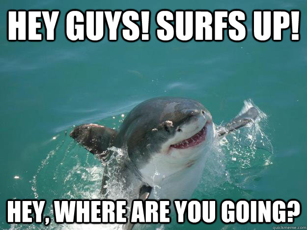 Hey guys! Surfs up! Hey, where are you going? - Hey guys! Surfs up! Hey, where are you going?  Misc