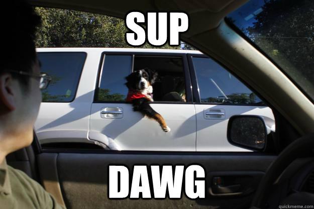 Sup  Dawg
