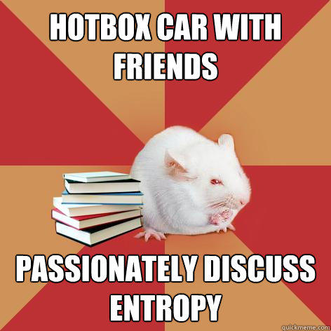 Hotbox car with friends Passionately discuss entropy  Science Major Mouse