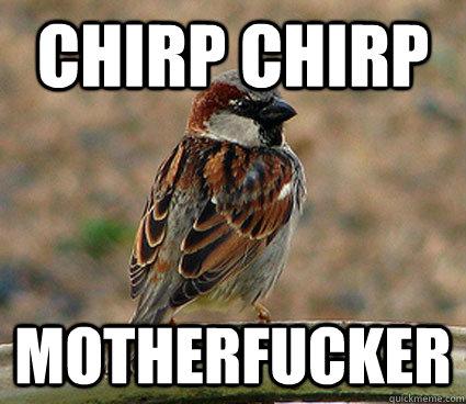 Chirp Chirp motherfucker