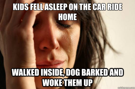 KIDS FELL ASLEEP ON THE CAR RIDE HOME WALKED INSIDE, DOG BARKED AND WOKE THEM UP - KIDS FELL ASLEEP ON THE CAR RIDE HOME WALKED INSIDE, DOG BARKED AND WOKE THEM UP  First World Problems