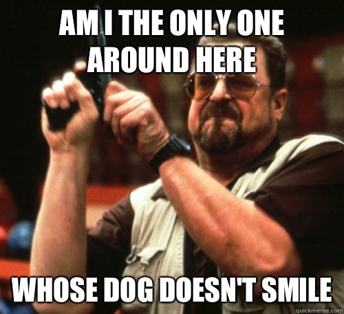 Am i the only one around here Whose dog doesn't smile - Am i the only one around here Whose dog doesn't smile  Am I The Only One Around Here