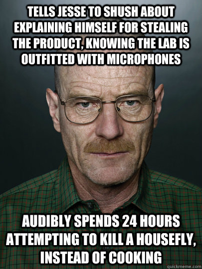 Tells Jesse to shush about explaining himself for stealing the product, knowing the lab is outfitted with microphones Audibly spends 24 hours attempting to kill a housefly, instead of cooking   Advice Walter White