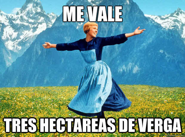 Me Vale Tres Hectareas de Verga - Me Vale Tres Hectareas de Verga  Sound of Music- Election