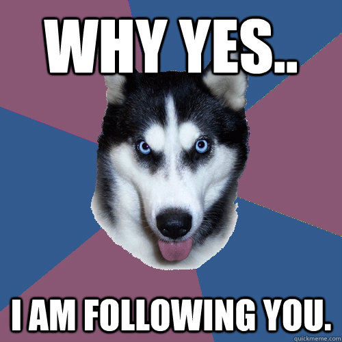 Why yes.. I am following you. - Why yes.. I am following you.  Creeper Canine