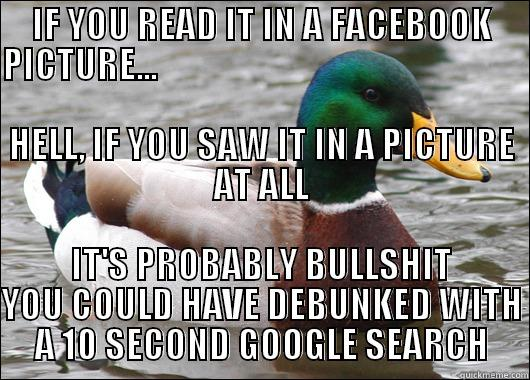 Actual Advice Mallard - IF YOU READ IT IN A FACEBOOK PICTURE...                                                                                                                       HELL, IF YOU SAW IT IN A PICTURE AT ALL IT'S PROBABLY BULLSHIT YOU COULD HAVE DEBUNKED WITH A 10 SECOND GOOGLE SEARCH Actual Advice Mallard