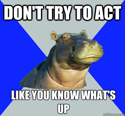 Don't try to act  Like you know what's up    Skeptical Hippo