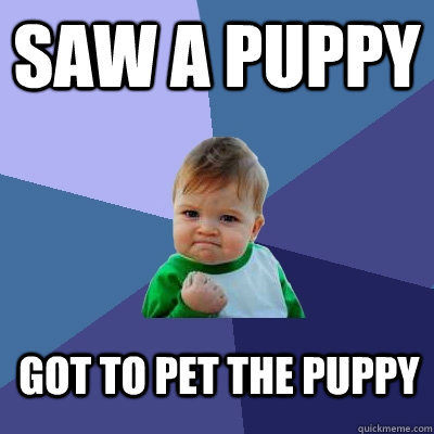 saw a puppy got to pet the puppy  Success Kid