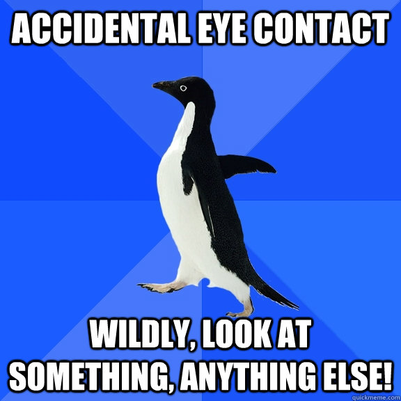 accidental eye contact wildly, look at something, anything else! - accidental eye contact wildly, look at something, anything else!  Socially Awkward Penguin