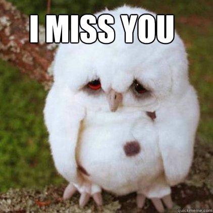 i miss you funny meme - photo #37