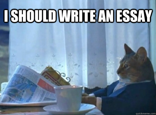 I should write an essay  - I should write an essay   Misc