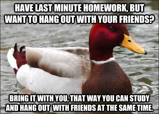 have last minute homework, but want to hang out with your friends? bring it with you, that way you can study and hang out  with friends at the same time. - have last minute homework, but want to hang out with your friends? bring it with you, that way you can study and hang out  with friends at the same time.  Malicious Advice Mallard
