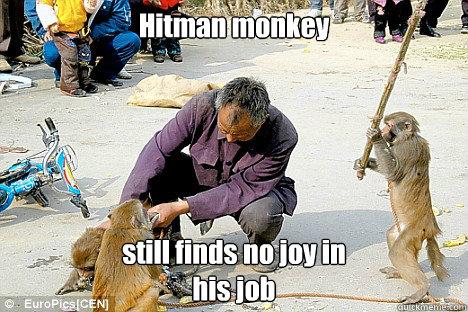 Hitman Monkey Memes Quickmeme