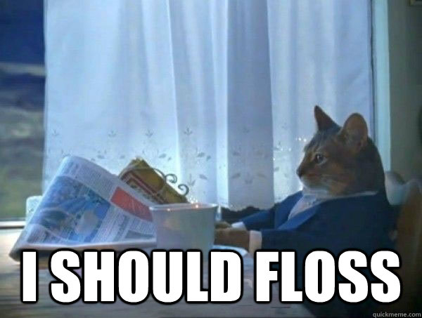 I should floss - I should floss  morning realization newspaper cat meme