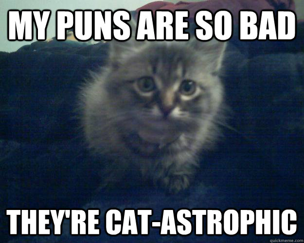 my puns are so bad they re cat astrophic   my puns are so bad they re