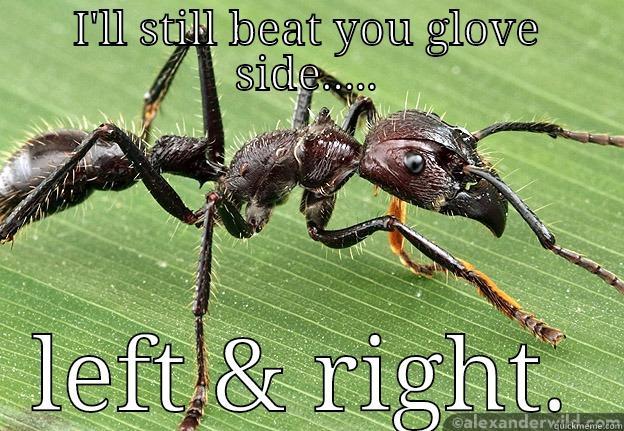 Bullet Ant Hockey - I'LL STILL BEAT YOU GLOVE SIDE..... LEFT & RIGHT. Misc