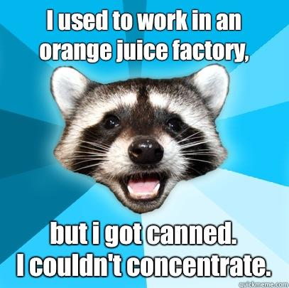 I used to work in an orange juice factory, but i got canned.  I couldn't concentrate. - I used to work in an orange juice factory, but i got canned.  I couldn't concentrate.  Lame Pun Coon