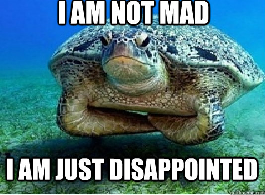 Disappointed turtle meme - photo#2