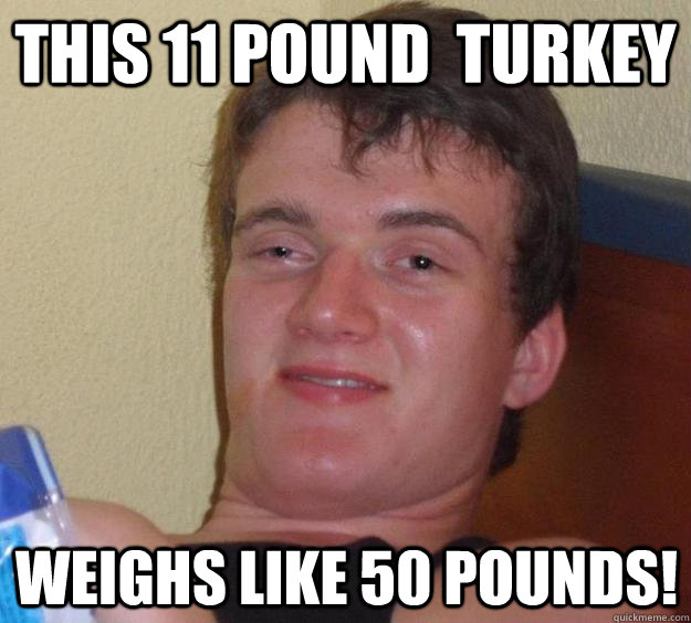 this 11 pound  turkey  weighs like 50 pounds! - this 11 pound  turkey  weighs like 50 pounds!  10 Guy