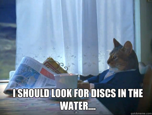 I should look for discs in the water....  - I should look for discs in the water....   1% Cat