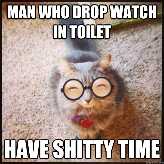 0ef9184f34da0347e6c549a655857ae6807f71cbd37de4aeb7e1894cd69eac00 chinese proverb cat memes quickmeme