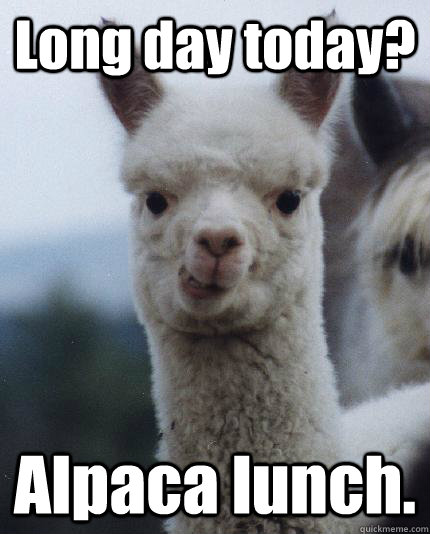 Long day today? Alpaca lunch.