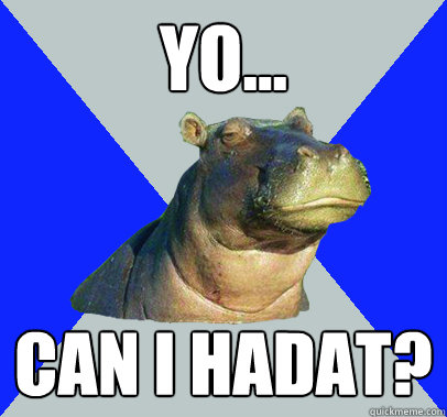 yo... Can i hadat? - yo... Can i hadat?  Skeptical Hippo
