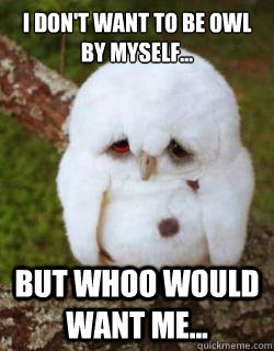 I don't want to be owl by myself... but whoo would want me... - I don't want to be owl by myself... but whoo would want me...  Sad Owl