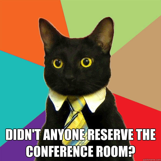 Didn't anyone reserve the conference room? -  Didn't anyone reserve the conference room?  Business Cat