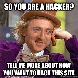 so you are a hacker? tell me more about how you want to hack this site