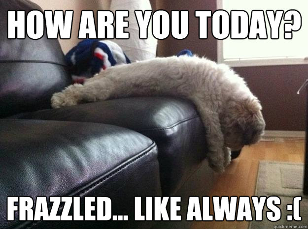 How are you today? Frazzled... like always :(