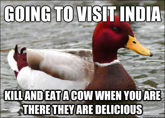 Going to visit India  Kill and eat a cow when you are there they are Delicious  - Going to visit India  Kill and eat a cow when you are there they are Delicious   Malicious Advice Mallard