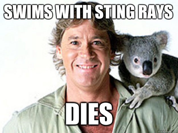 Swims with sting rays Dies