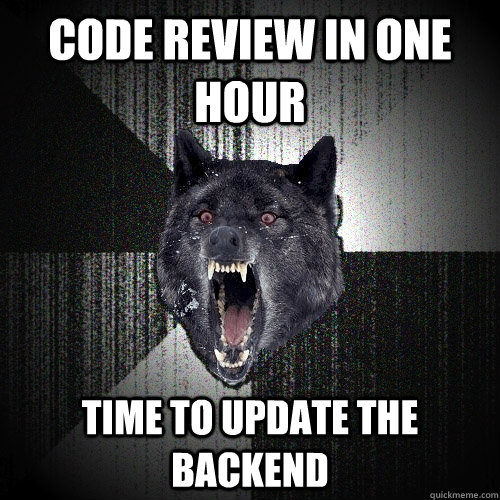 CODE REVIEW IN ONE HOUR TIME TO UPDATE THE BACKEND - CODE REVIEW IN ONE HOUR TIME TO UPDATE THE BACKEND  Insanity Wolf